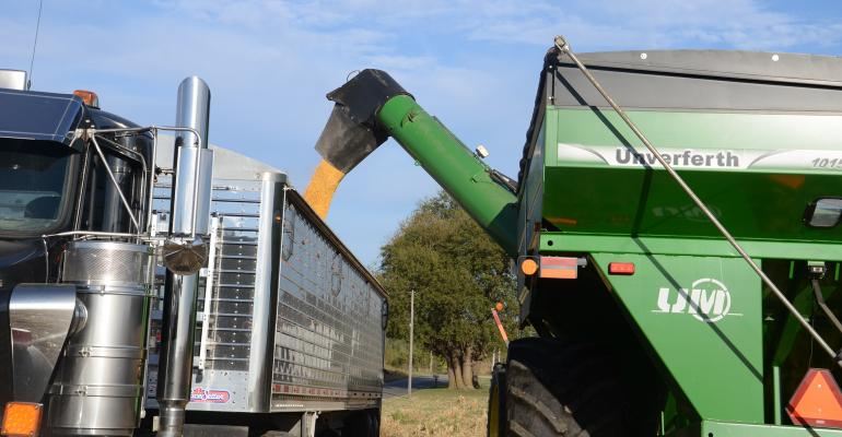 corn being loaded from cart into truck