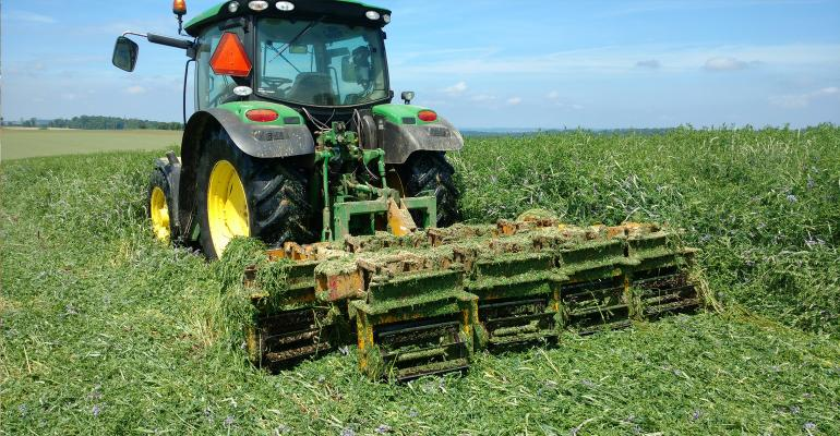 Roller-crimping cover crops