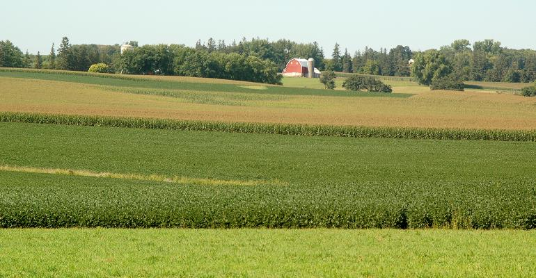 crop field with farmstead in distance