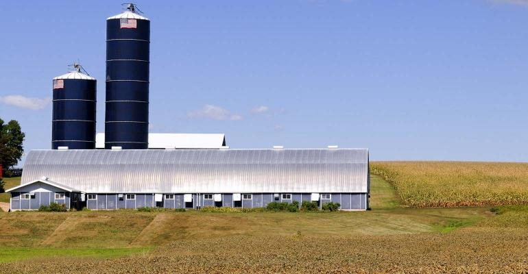 Modern silos and barn are surrounded by fields of corn.