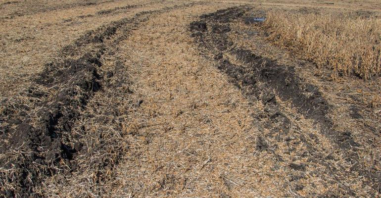 Muddy ruts in a soybean field after harvest.