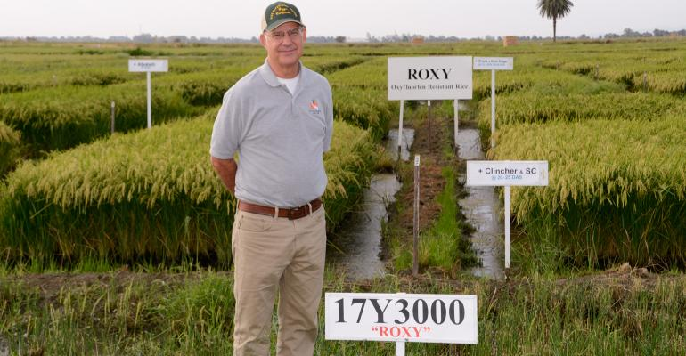 Rice researcher Kent McKenzie