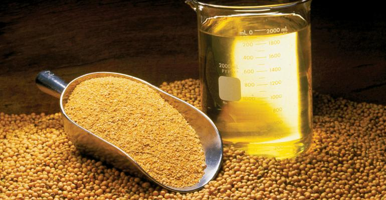 Soybean Oil, Meal and Beans