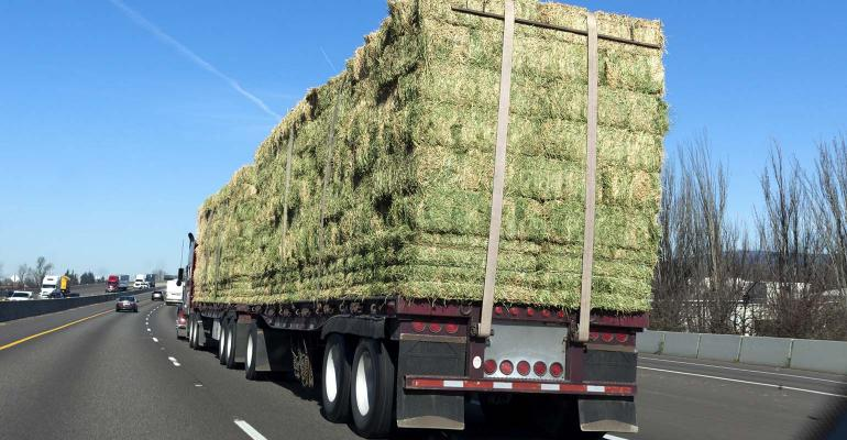 Rear view of semi truck with cargo of hay