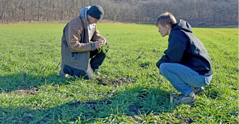 Ross Weymiller and soil conservation project director Sara Berges check his field test, as cereal rye was planted four different ways, along with injecting manure.