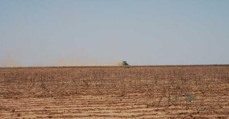 Experienced farmers remember droughts worse than 2011: Part 1