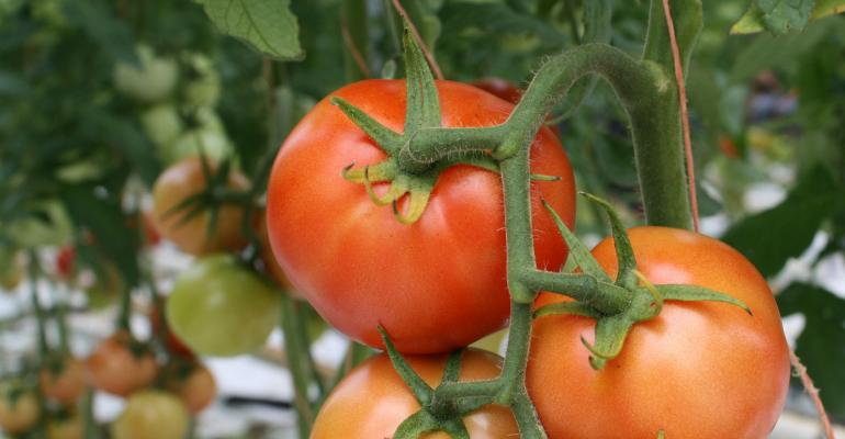brad-haire-farm-press-tomato-12-a.jpg
