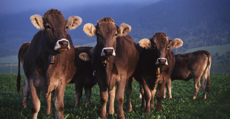 Programs available to assist forage and livestock losses