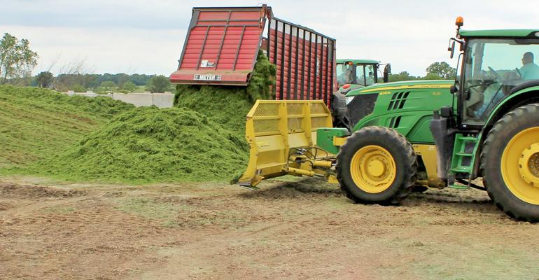tractor and truck unloading chopped corn silage for feed
