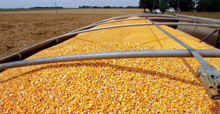 Can the Corn Market tailwinds continue?