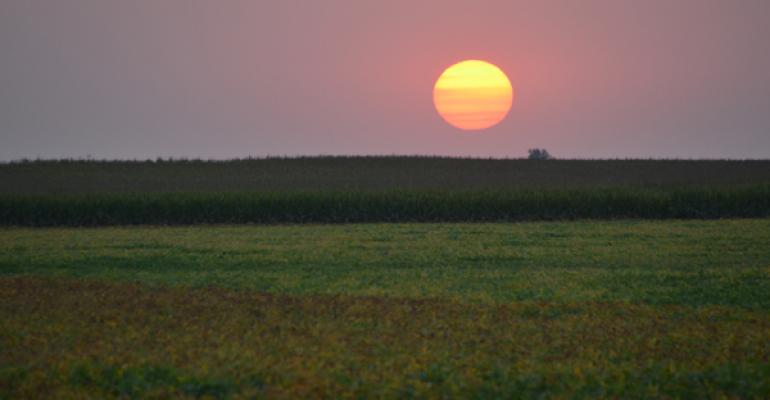 corn-soybean-sunset-lawton