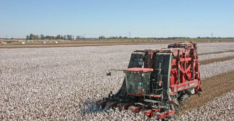World will need your cotton in 2011