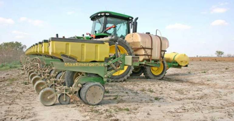 Planting day most important for cotton