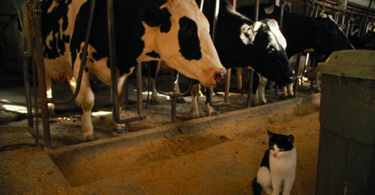 Dairy draft legislation criticized, proponents push back