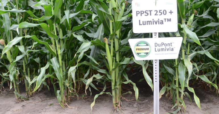 DuPont Pioneer will be moving to a new seed treatment in 2015 with its PPST250 product enhanced with the addition of Lumivia a new insecticide that offers added protection from black cutworm and fall armyworm