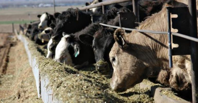Considerations for slowing feedlot cattle growth due to the COVID-19 pandemic