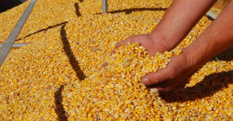 Will the 2012 Corn Yield be Above or Below the Trend Line?