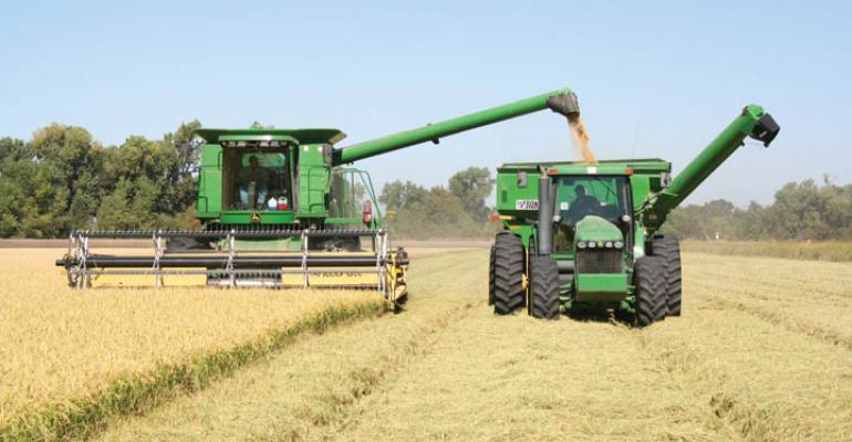 Sacramento Valley rice ready for harvest