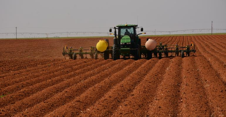 Planting 1000 acres of peanuts keeps farm hands busy