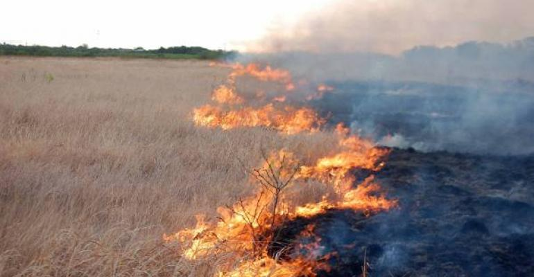 Prescribed burn helps reduce wildfire threat to communities