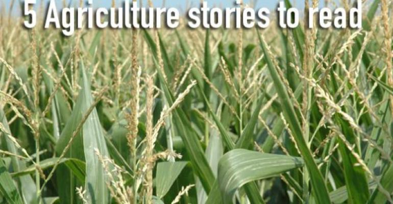 5 Agriculture stories to read, Aug. 21, 2015