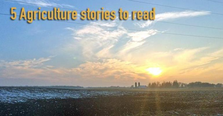 5 Agriculture stories to read, Nov. 13, 2015