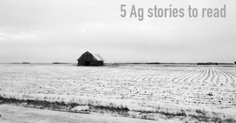 5 Agriculture stories to read, Feb. 13, 2015