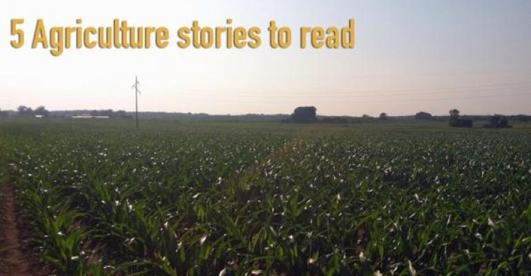 5 Agriculture stories to read, Aug. 15, 2014