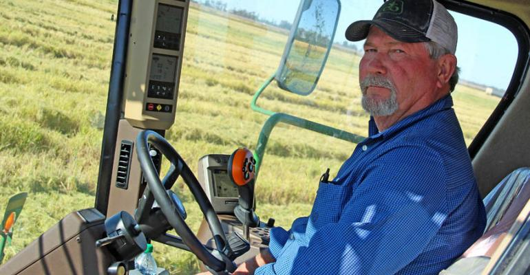 Rice harvest strong at Campbell Brothers Farms