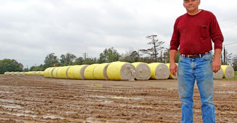 Despite rain, cotton show goes on for Big Creek Gin - photos