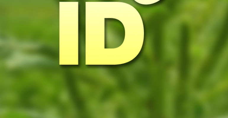 Weed identification mobile app available