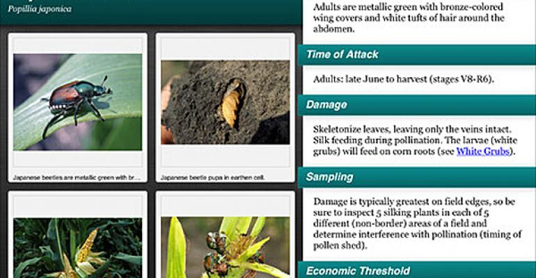 6 apps for identifying weeds, pests and more