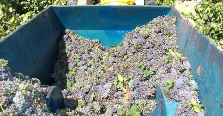 'Judgement in Paris' marked global arrival of California wine