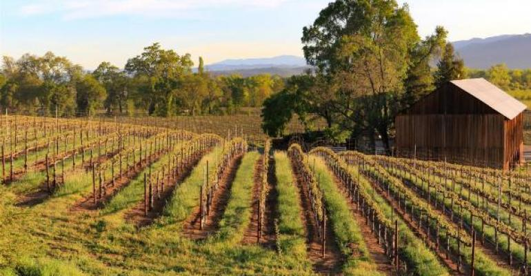 Organic wine grapes profitable on North Coast?