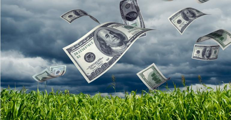 money-blowing-cornfield-Kativ-iStock-Getty Images-172323492_0.jpg