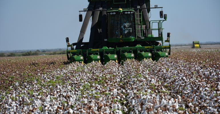 Clint Abernathy is harvesting nearly 4 bales of cotton from this irrigated field near Altus Okla He farms with sons Justin and Jarod and soninlaw Evan Coppock