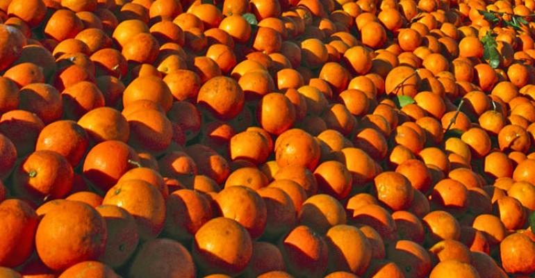 Another billion dollar year for Sunkist Growers