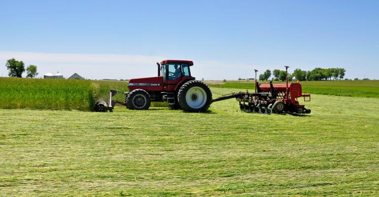 roll-crimping-cereal-rye-practical-farmers-iowa