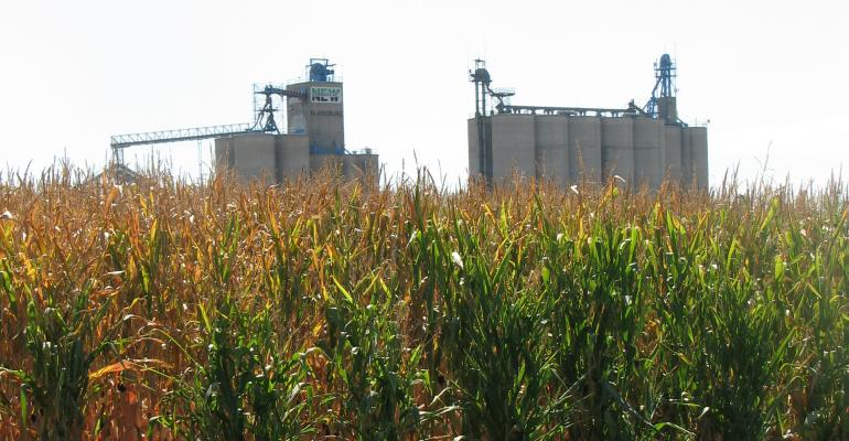 corn field with grain bins