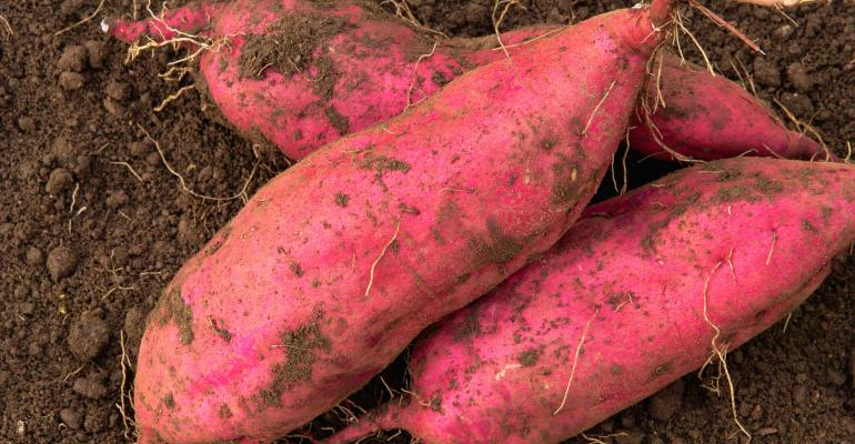 sweet-potato-GettyImages-665918374.jpg
