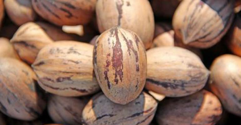 Promising crop prospects for New Mexico pecan grower