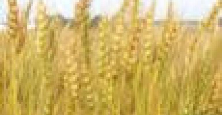 CME Modifies Wheat Futures Contract