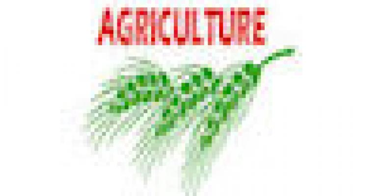 NSAC Offers Comprehensive Farm Bill Policy Platform