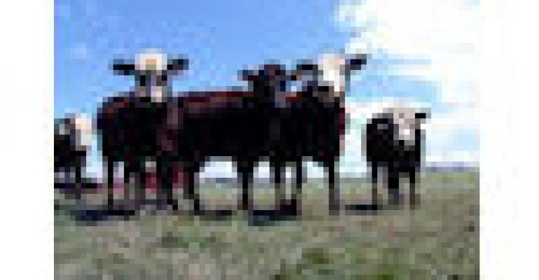 Texas Drought Takes Cow Numbers Down