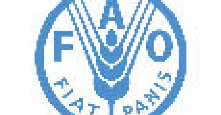 New FAO Head Makes Reform Pledge