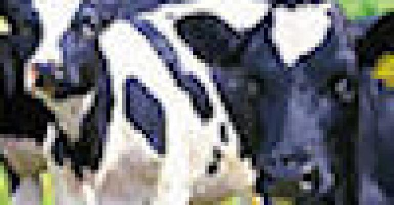 Organic Dairy Calf and Milk Quality Management Field Day Planned