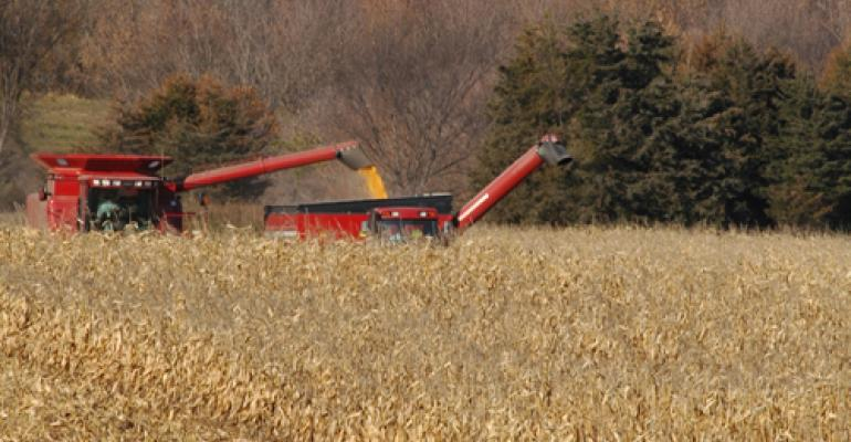 Impact of In-Field Drydown Rates on Corn Harvest