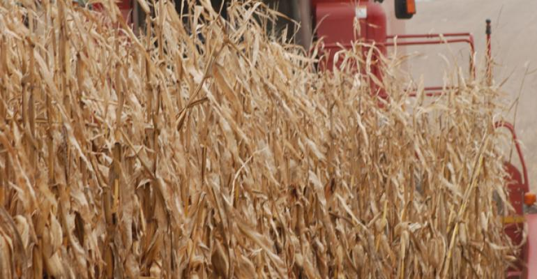 USDA predicts record corn production at 2016 harvest