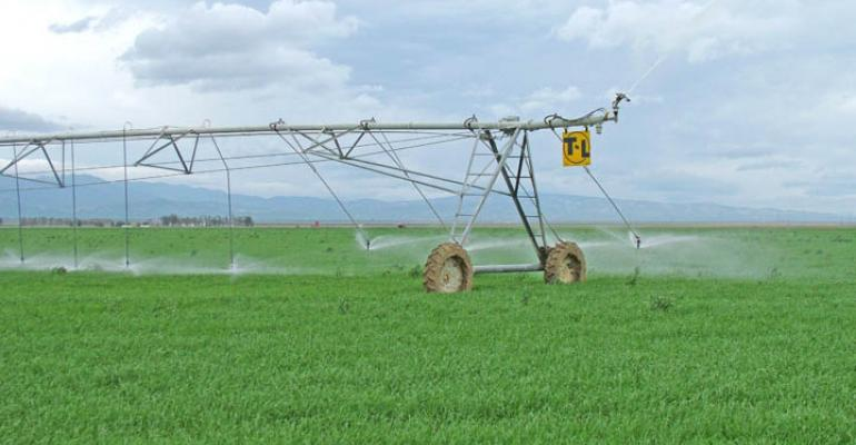 New report shows California agriculture already water-efficient