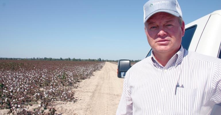 COTTON PRODUCER MIKE Morgan member of a group of lsquozero tolerancersquo farmers in Arkansasrsquo Clay County quickly dispatches any Palmer amaranth he finds ldquoWhenever anyone on the farm is riding down the turnrow watering whatever and sees a pigweed we go get itrdquo